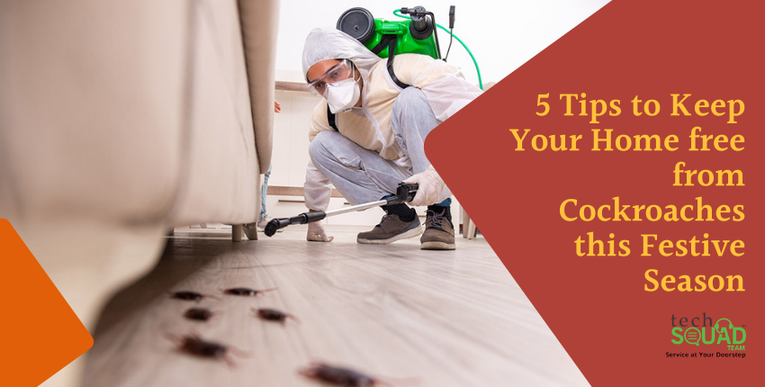 5 Tips to Keep Your Home free from Cockroaches this Festive Season