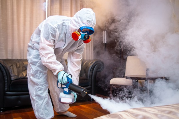 5 Easy Ways to Keep Your Home Germ Free