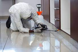 How to prepare for a Professional pest Control Service