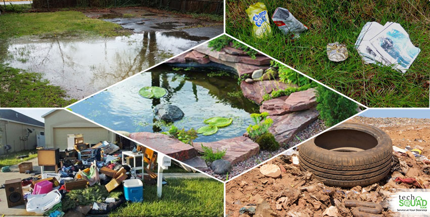 7 easy ways to stop mosquito breeding in your yard