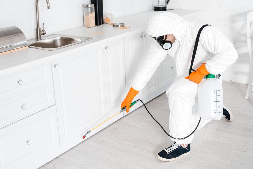 Various Safety Precautions to be Taken While Doing Pest Control!