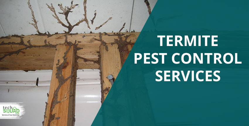 Are Termites Responsible For Your Home's Foundation Damage?