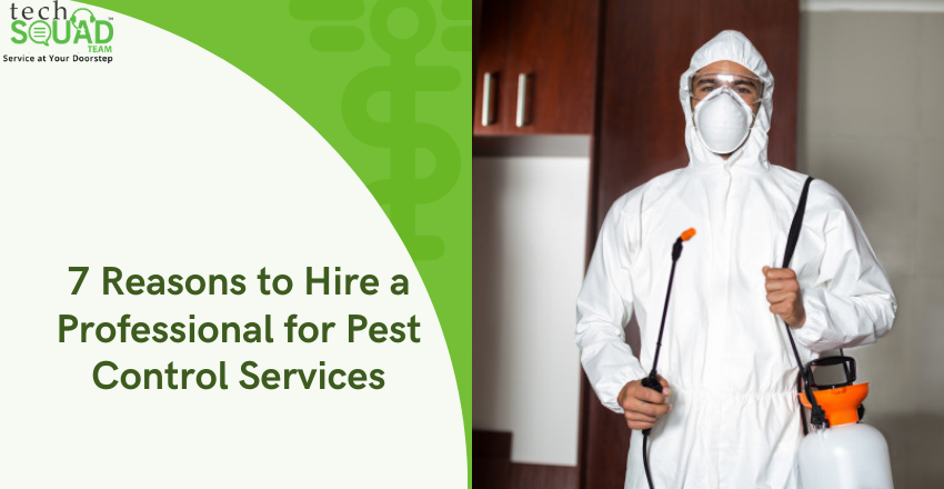 7 Reasons to Hire a Professional for Pest Control Services