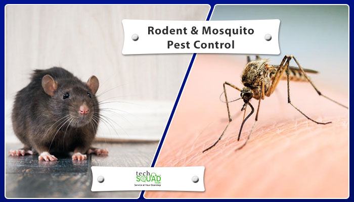 Various Diseases Carried by Rodents and Mosquitoes and their Prevention